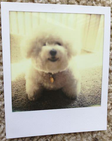 03 Polaroid